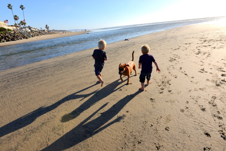 Dog-Beach-2-kids-and-dog2resize-750x501-934x