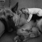 22 niños pequeños con sus perros grandes ¡Para comérselos!