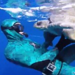 Me quedé sin palabras al ver la reacción de esta tortuga rescatada