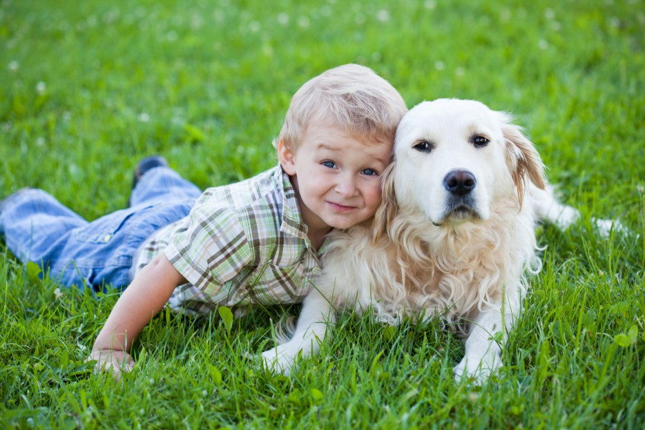 using_service_dogs_to_help_kids_with_autism_spectrum_disorder_0-934x